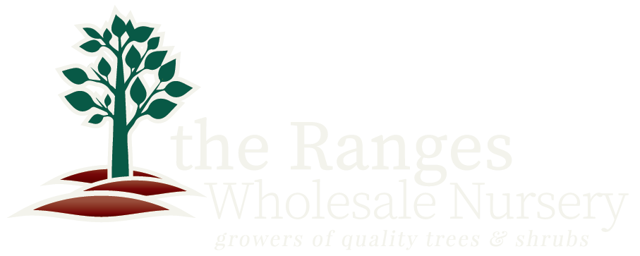 The Ranges Nursery